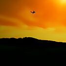 COME FLY WITH ME by leonie7