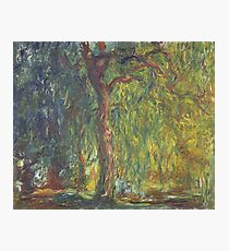 Weeping Willow by Claude Monet Photographic Print
