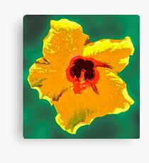Painted Hibiscus Canvas Print