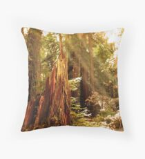 Autumn Rays Throw Pillow