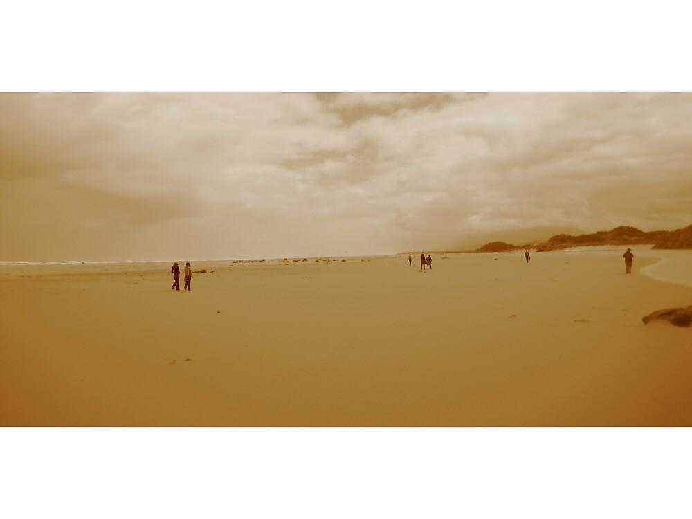 Tasmanian Beach by Max Berggren