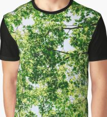 Tree Branches And Leaves On Summer Blue Sky Graphic T-Shirt