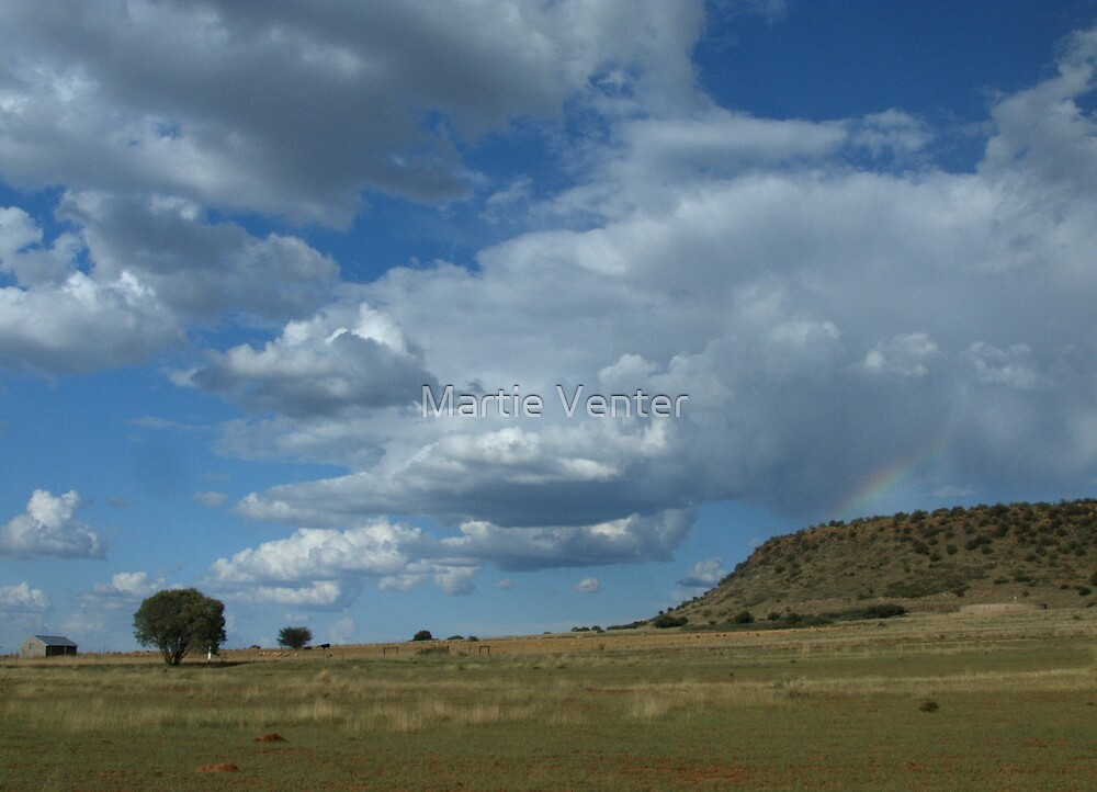 Under African Skies by Martie Venter