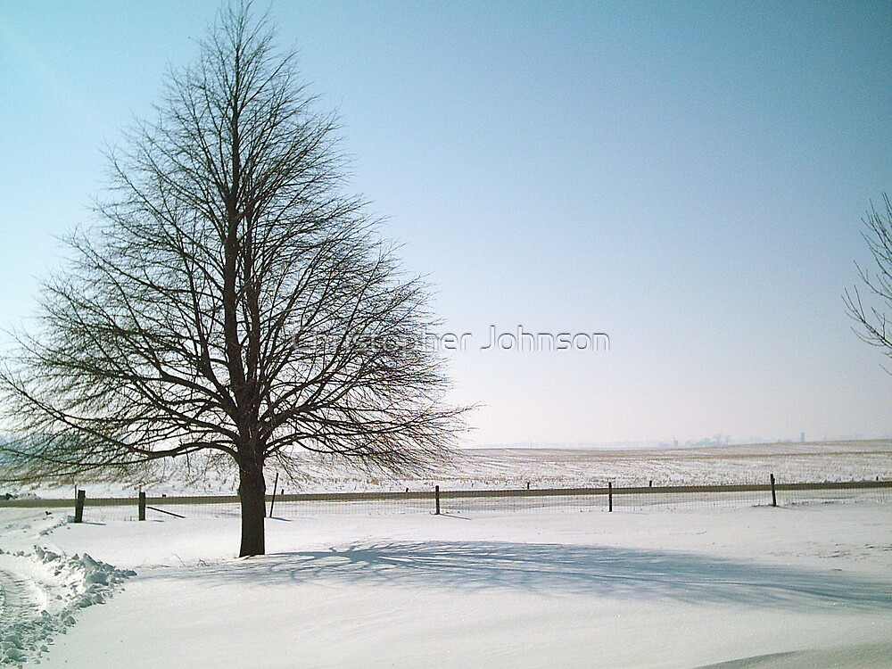 Perfect Winter Tree - Horizontal - at Farm - Feb. 2008 by Christopher Johnson