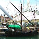 Tourist boat by Tom Gomez