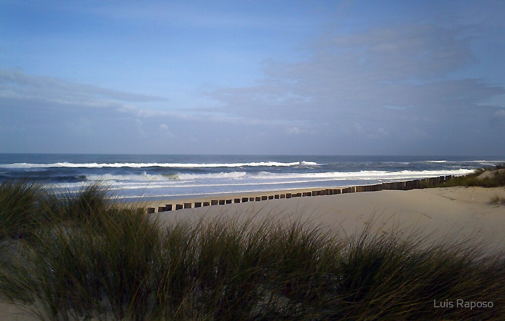 Praia da Torreira by Luis Raposo
