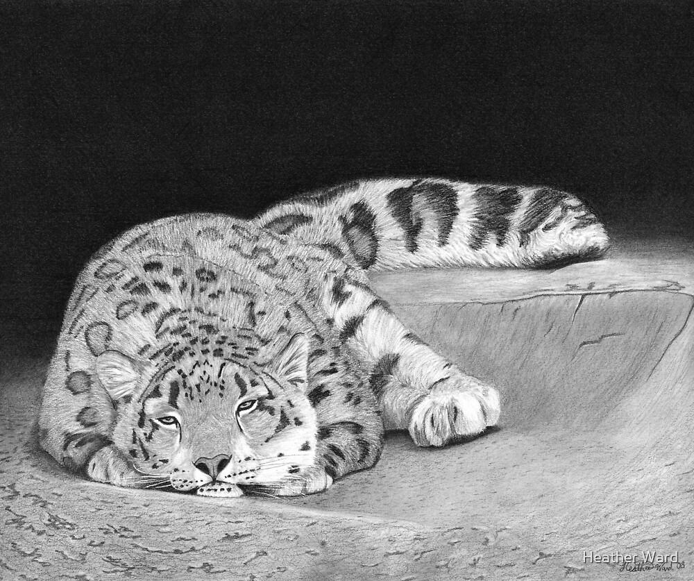 Daydreamer - Snow Leopard by Heather Ward