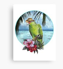 caribbean cool Canvas Print