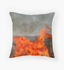 The Fiery Horse of the Apocalypse. Throw Pillow