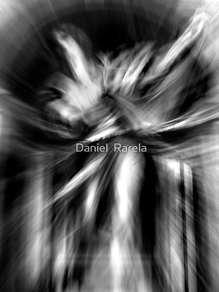 Valkyrie by Daniel  Rarela