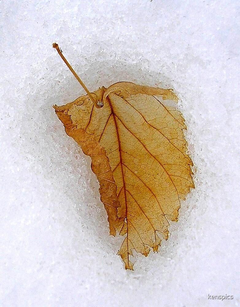 Winter Receding by kenspics