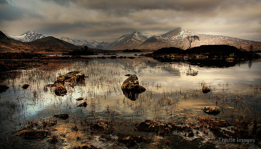 Rannoch Nights by Thistle Images