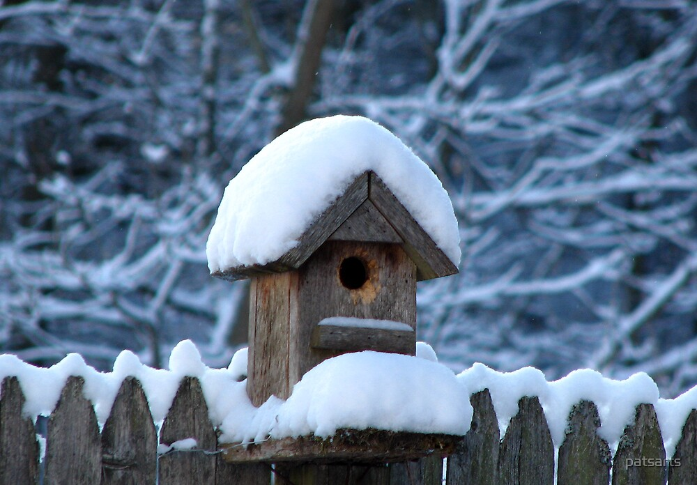 Snowy Birdhouse by patsarts