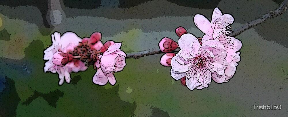 Springtime by Trish6150