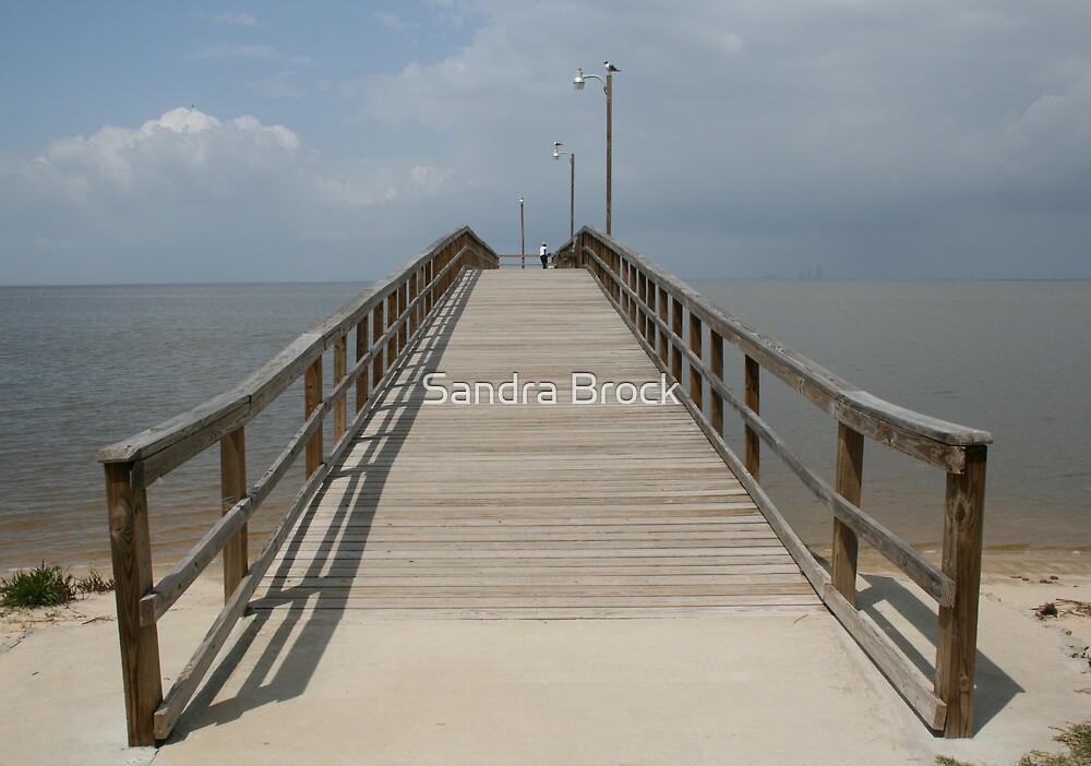 Mobile Bay by Sandra Brock