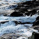 Foaming Shore by toby snelgrove  IPA