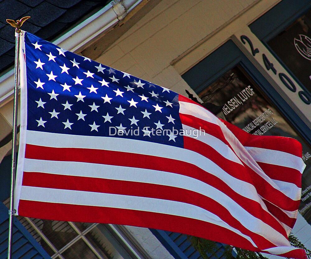 flag by David Stembaugh
