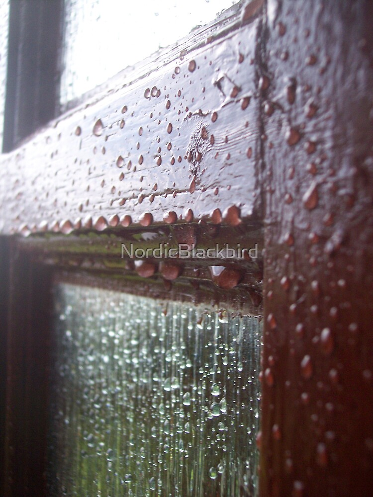 tears on back door by NordicBlackbird