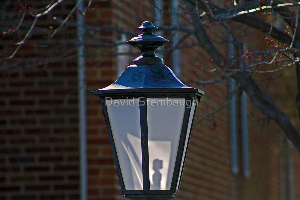 lamp light by David Stembaugh