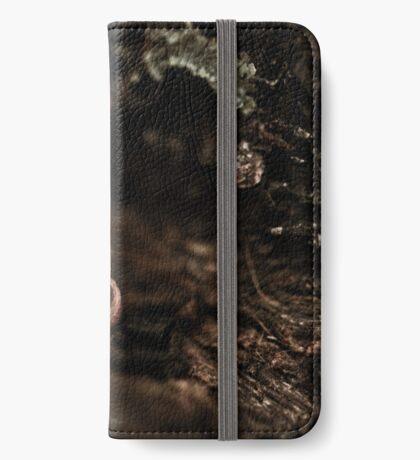 Versteckt iPhone Flip-Case