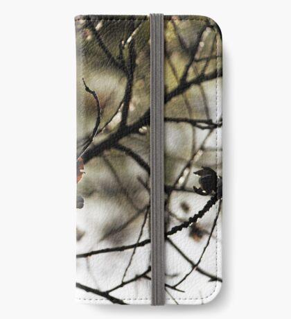 Still Hanging-Winter Series- iPhone Flip-Case