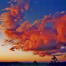 blazing sky by caroline ellis