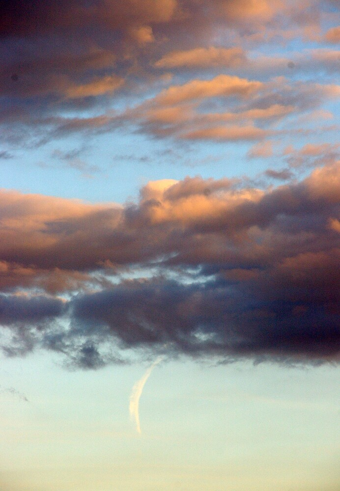 Storm clouds approaching by Deidre Cripwell