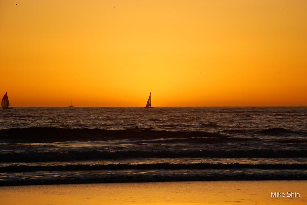 Venice beach by Mike Shin