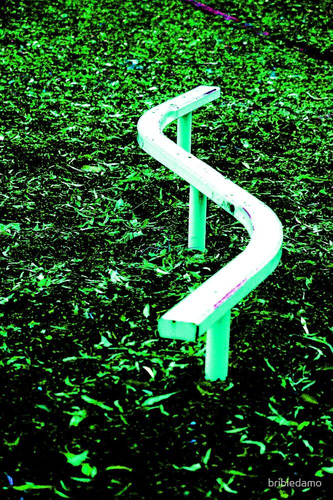 The Way by bribiedamo
