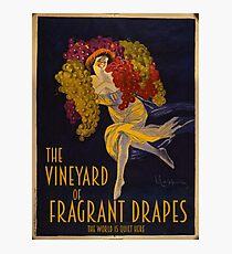 Visit the Vineyard of Fragrant Drapes! Photographic Print