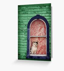 Cat  in the Window Greeting Card