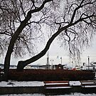 December Day in Oslo by Ms-Bexy