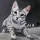 Ocicat Kitten by Pia  Hiki