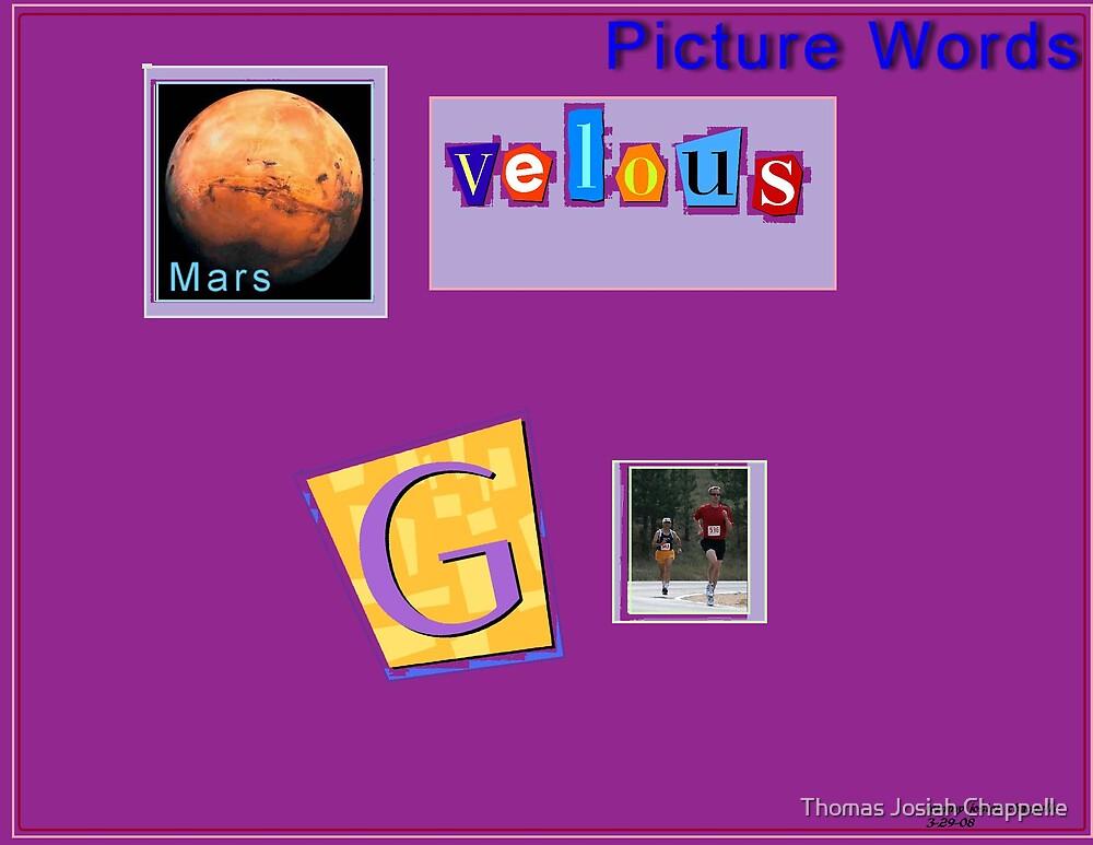 """Marvelous Words"" Pikchure - gram by Thomas Josiah Chappelle"