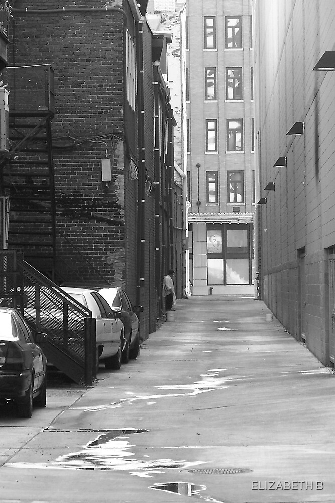 knoxville alley by ELIZABETH B