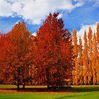 Autumn Garden by D-GaP