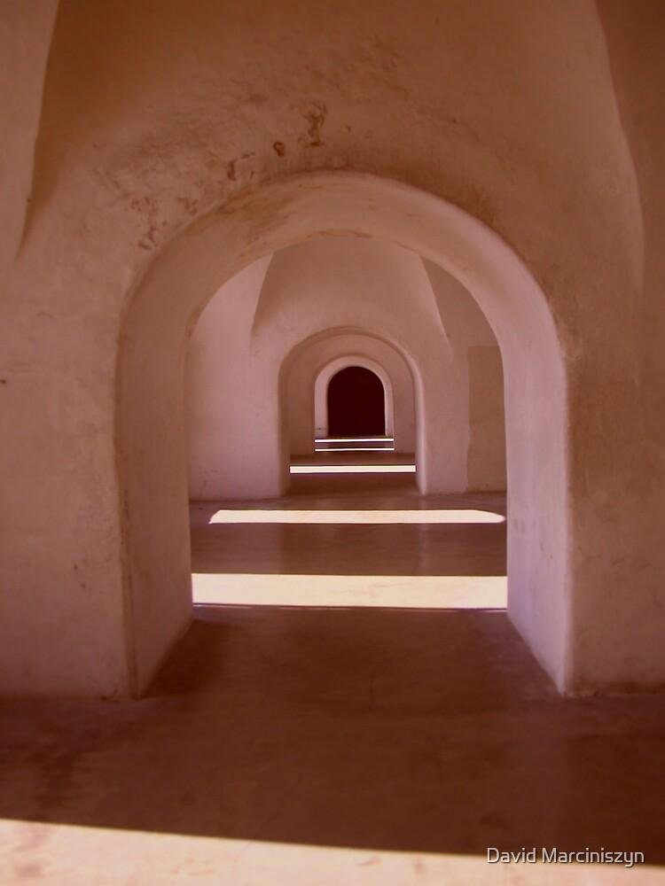 Study I - Light and Shadows  by David Marciniszyn