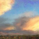 New Mexico sunset by Annette