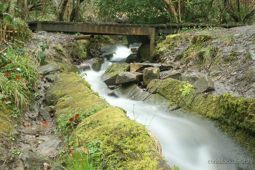 EMPTY BRIDGE  by chrisblackwell29