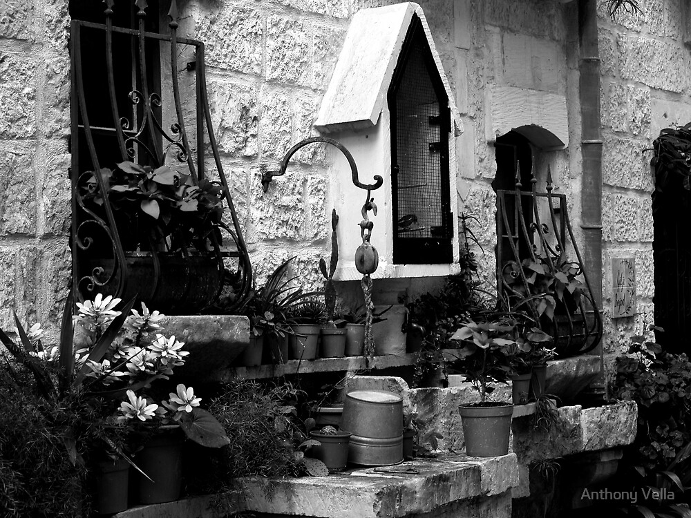 Windows, Old Well and Birdcage by Anthony Vella