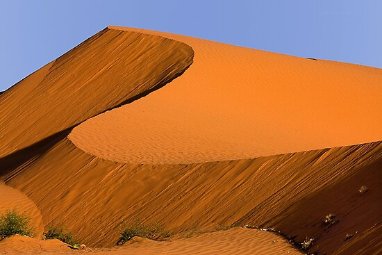 1116 Dune at Sunrise by Hans Kawitzki