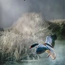Winter at the Lake by Brian Tarr