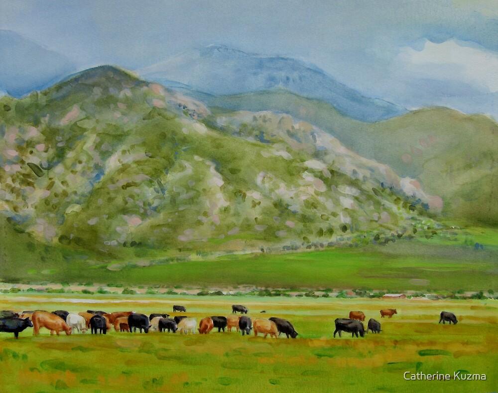 Roaming Free by Catherine Kuzma