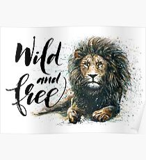 Lion Wild and Free Poster