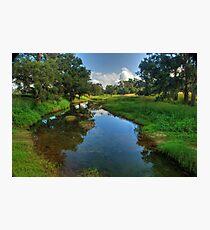 Glen Davis Creek Photographic Print