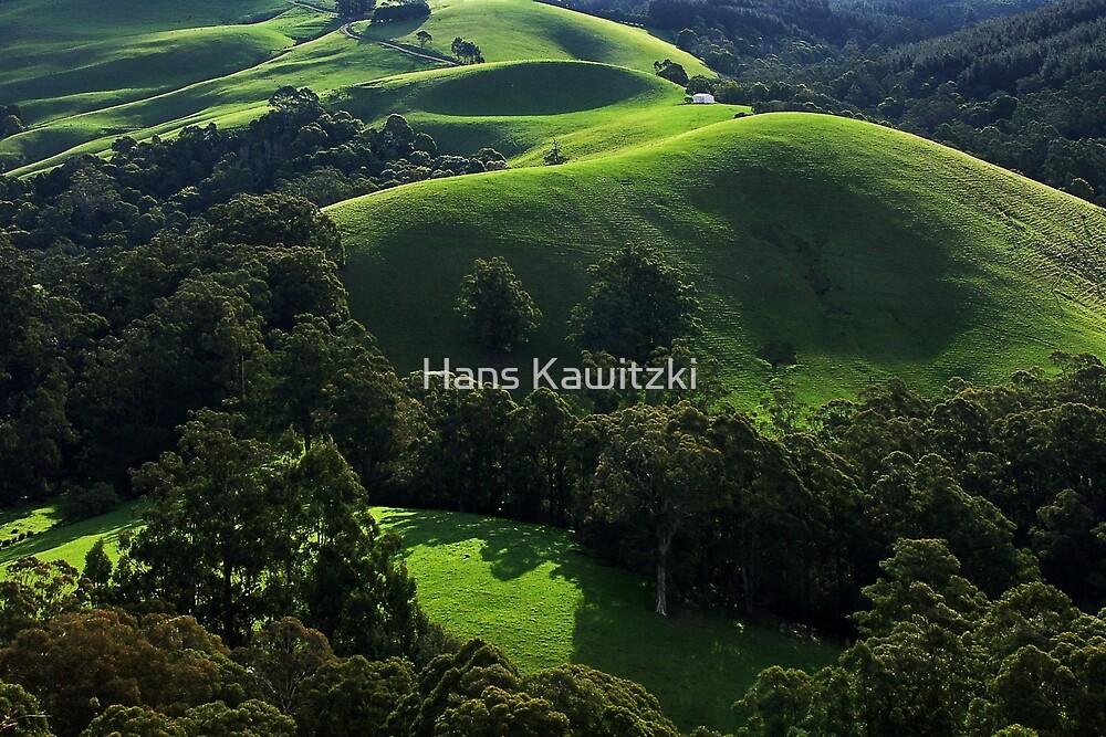 1151 Green waves of Gippsland by Hans Kawitzki