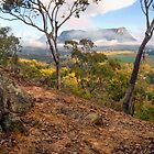 Capertee Sunrise Panorama by STEPHEN GEORGIOU PHOTOGRAPHY