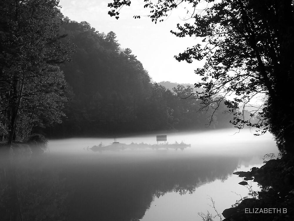 WATERS EDGE by ELIZABETH B