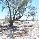 Aussie Outback by DaveWatto