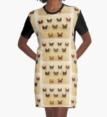 Vintage Butterfly Display Graphic T-Shirt Dress